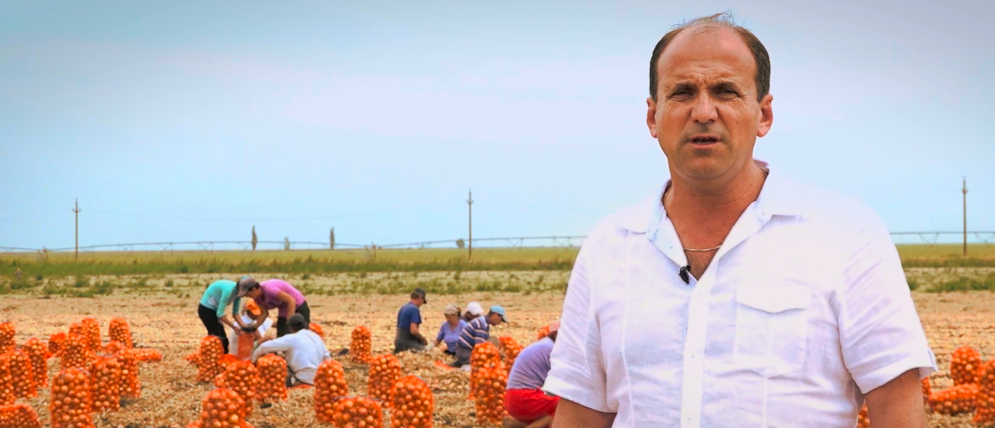 Drip Irrigation for Onion in Romania: Netafim Customer Testimonial